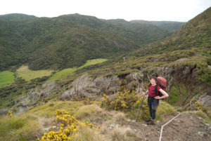 Image of Kath Dewar hiking.